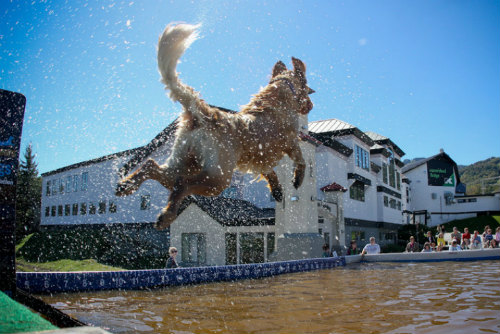 DockDogs Championships - Killington, VT - October 9 - 11, 2011