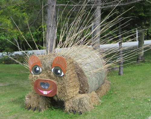 Porcupine hay sculpture - Mountain Sports Inn (Killington, Vermont) - Fall 2011